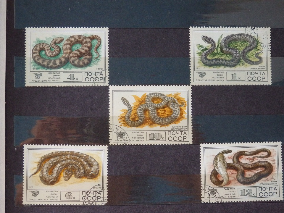 A collection of stamps with snakes | Hobby Keeper Articles