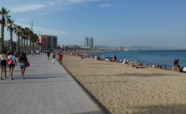 Barcelonetta beach, the Olympic port and two skyscrapers are visible-the Arts Hotel and the Mapfre office | Hobby Keeper Articles