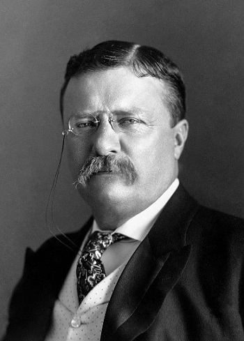 Theodore Roosevelt - 26th President of the United States | Hobby Keeper Articles