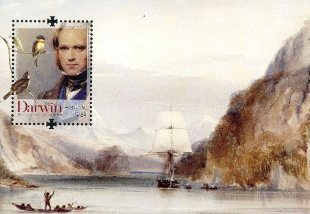 Darwin on mark Portugal | Hobby Keeper Articles
