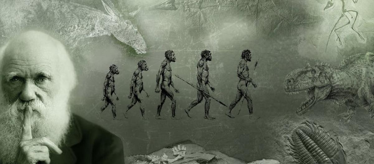 Photo Darwin and human evolution| Hobby Keeper Articles