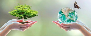 Environmental Protection | Hobby Keeper Articles