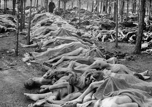 Bodies of prisoners of the Bergen-Belsen concentration camp in the forest before the funeral   Hobby Keeper Articles