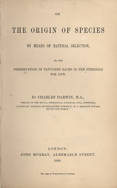 The Book Of Darwin | Hobby Keeper Articles